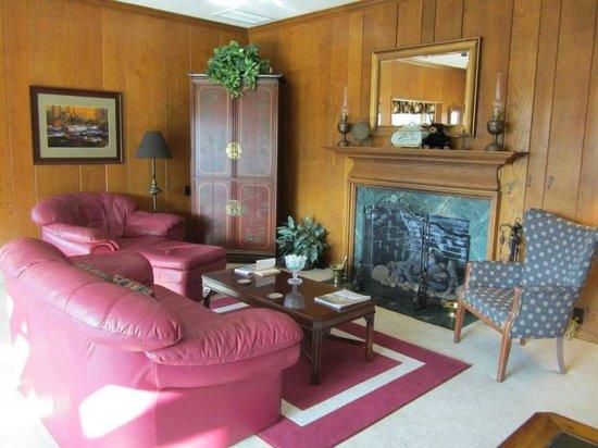Brookside Mountain Mist Inn: Living Room fireplace :)