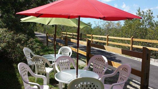 Sugarloaf Food Company : Bike Path Seating
