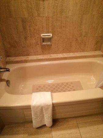 Pan Pacific Vancouver: The bathtub