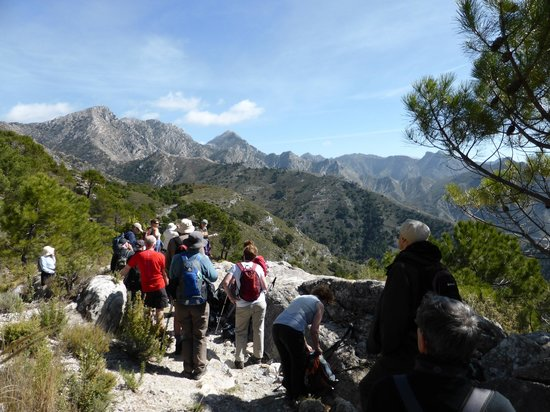 Hotel Finca el Cerrillo: Walking in the mountains