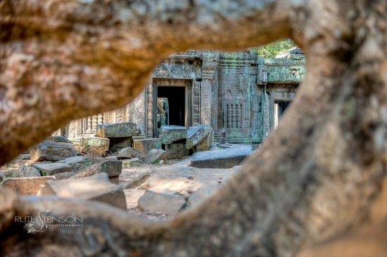 Angkor Guide Sopanha Private Tours: Angkor temples