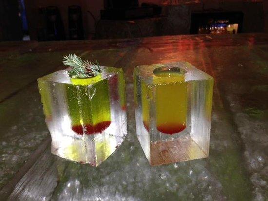 Hotel de Glace: drinks - snowmobile accident & arora borealis