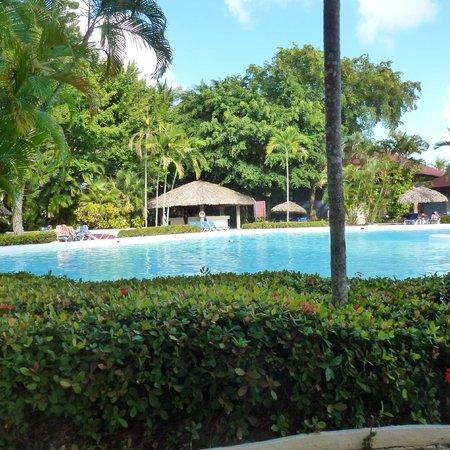 "Bavaro Princess All Suites Resort, Spa & Casino: la ""petite"" pisicne"