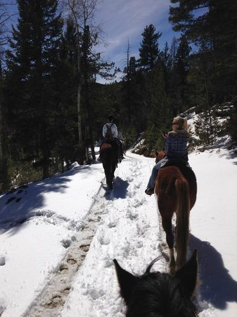 Old Stage Riding Stables: On the trail