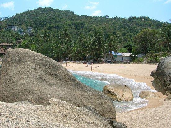 Coral Cove Resort: private beach
