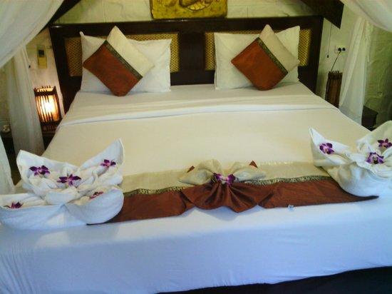 Boomerang Village Resort: orchids on arrival