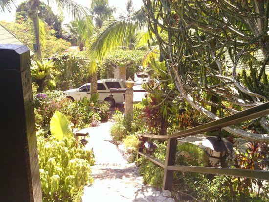 Boomerang Village Resort : looking out of 104