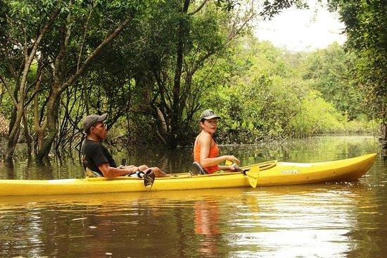 Reserva Natural Palmari: Взяв каяк, можно увидеть дельфинов..