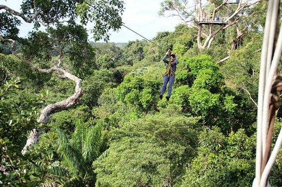 Reserva Natural Palmari: Канопи - попробуйте - не пожалеете!