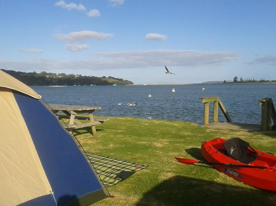 Whangateau Holiday Park: Whangateau- our beachfront tent set up