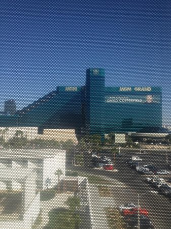 Tropicana Las Vegas - A DoubleTree by Hilton Hotel: View from Tower Room
