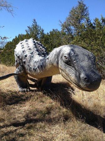 Dinosaur World: Life like dinosaurs dominating the Texas terrain!