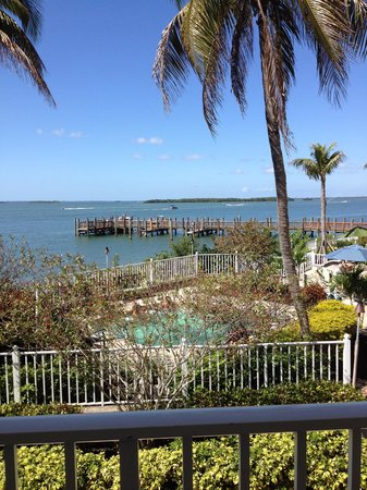 Sanibel Harbour Marriott Resort & Spa : View from verandah having drinks