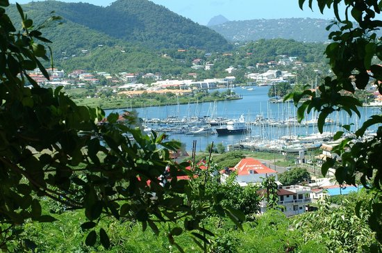Stephanie's Hotel: A tree top view overlooking Stephanie`s Hotel and the Rodney Bay Marina