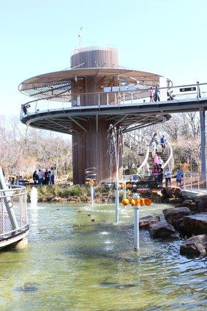 Arboretum et jardin botanique de Dallas : Children's Museum Tree House