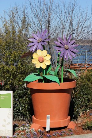 Arboretum et jardin botanique de Dallas : Children's Garden