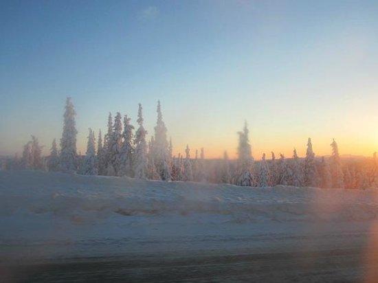 1st Alaska Tours: Icy landscape