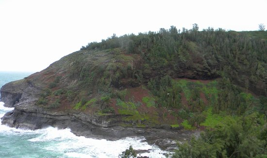 Kilauea Point National Wildlife Refuge: If you don't enter the refuge, this is your view