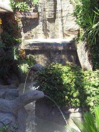 Servigroup Venus: waterfall outside hotel