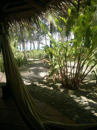 Hotel La Diosa: Blick aus der Hängematte in tropischen Garten