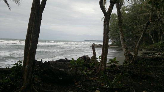 Hotel La Diosa: Blick auf Strand
