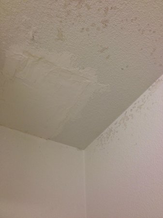 Rodeway Inn: Dirt and patched ceiling