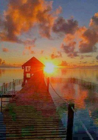 Pearl Havaiki: Splendido