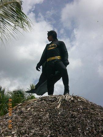 Iberostar Hacienda Dominicus : Batman !!!!