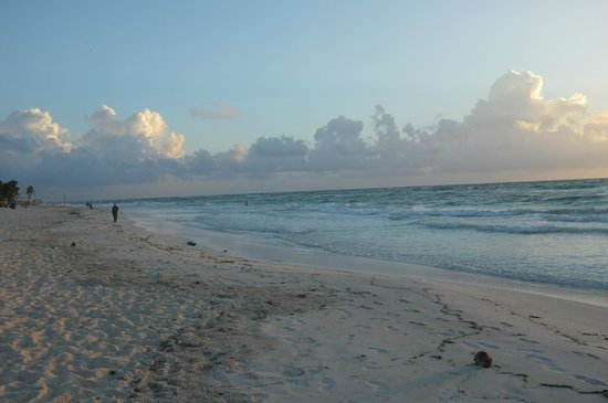 Amelie Tulum: Tulum Beach early morning.