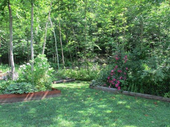 Adirondack Sunrise Motel & Cabins: Back garden