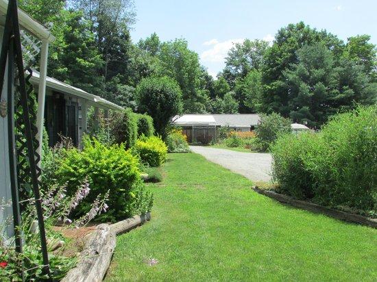 Adirondack Sunrise Motel & Cabins: looking south