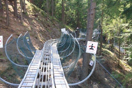 Lienzer Bergbahnen/ Osttirodler Alpine Coaster: Osttirodler