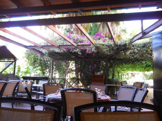 Ohtels Vil.la Romana: Outside dining area
