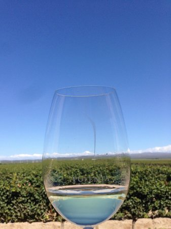 Ampora Wine Tours: Uco Valley