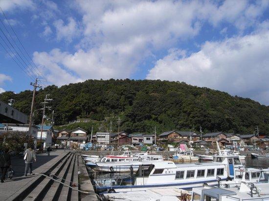 Okishima Island