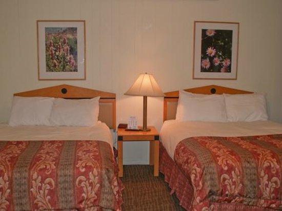 Island Acres Resort Motel: Deluxe studio with two queens