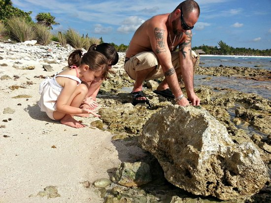 Bel Air Collection Xpu Ha Riviera Maya : Looking for hermit crabs and shells at the rocky beach.
