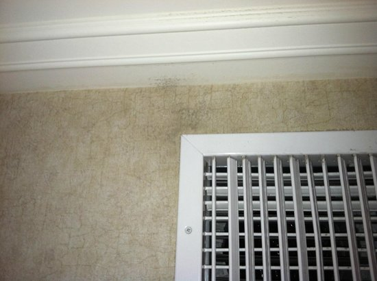 Madison Hotel : Dirt around hvac vent