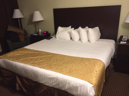 BEST WESTERN Sovereign Hotel - Albany: Brown and gold, ick