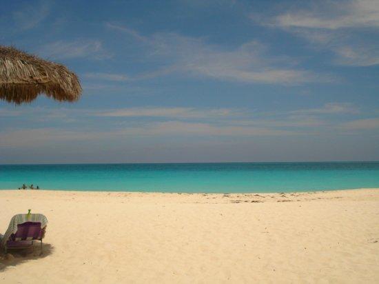 Eagle Beach Paradisíaca - Praia linda, de um azul magnifico!