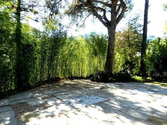 Can Millan Costa Brava : El jardín