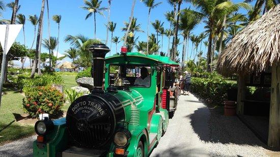 Grand Palladium Punta Cana Resort & Spa: trende trasnporte