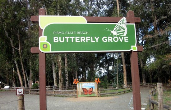 Monarch Butterfly Grove : main gate
