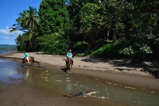Drake Bay, Costa Rica: Crossing a beachside stream
