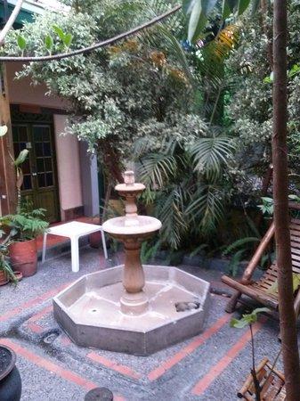 Hostal Fatima: yard garden
