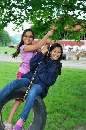 Liberty Hill Farm Inn: Swinging
