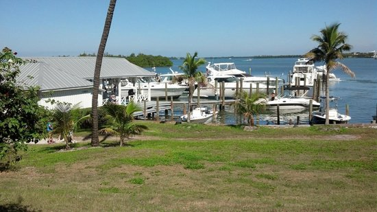 Cabbage Key Inn: View from restaurant