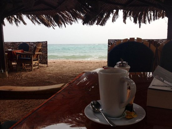 Dive Urge: Breakfast on the beach