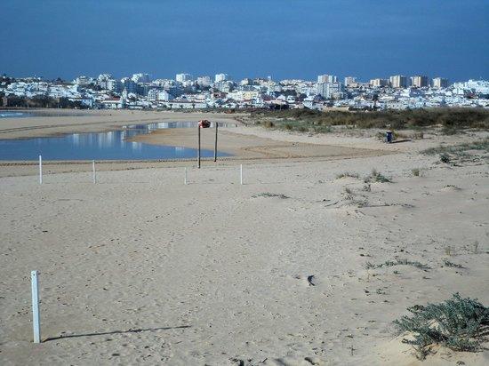 Vila Galé Lagos : THE MEIA PRAIA BEACH