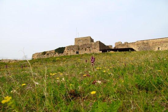 Forteresse de Mornas : Fortresse de Mornas